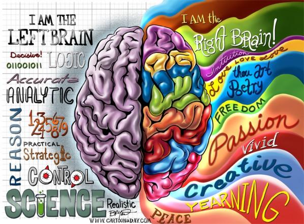 right-brain-left-brain-fnl-598x441